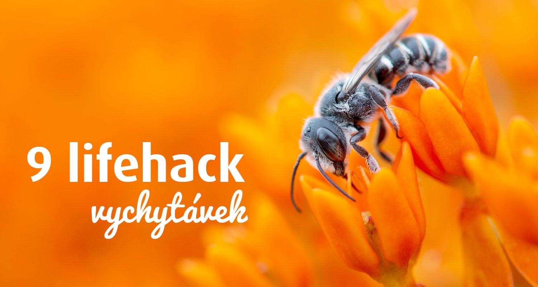9 lifehack vychytávek, které mi pomáhají být efektivní obrázek